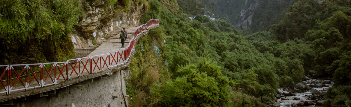 about yamunotri