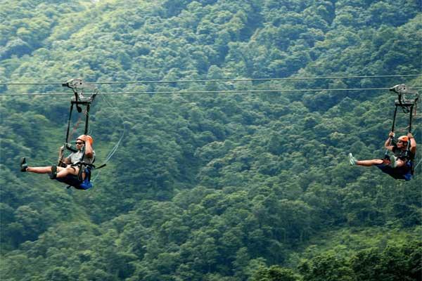 Flyingfox in Rishikesh