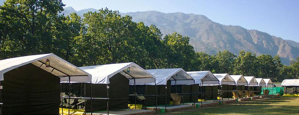 Red chilli camp