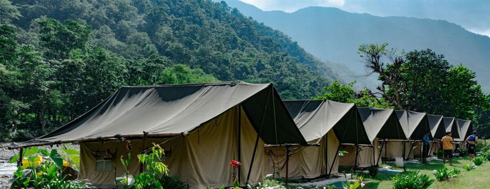 Wildex camp Rishikesh